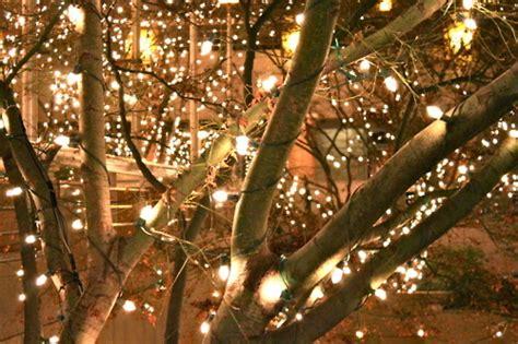 winter lights on