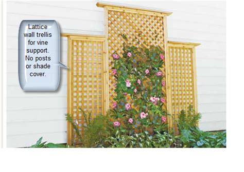 define trellis how to differentiate trellises arbors gazebos and pergolas