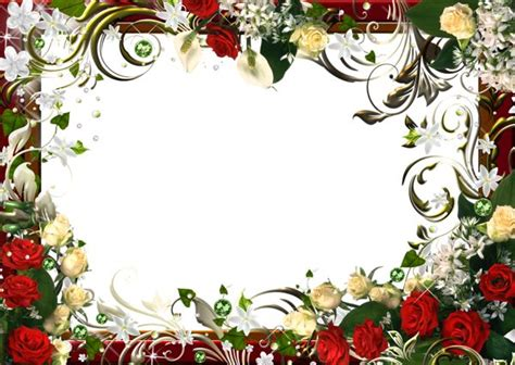 Bunga Poppy Mix Colour 17 best images about photo frames on pink
