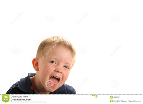 cute young boy royalty free stock photography image cute laughing young boy royalty free stock photography