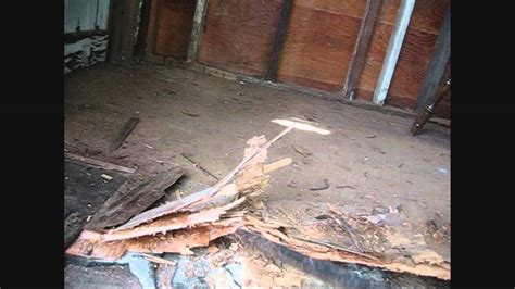 shed floor replacement part    youtube