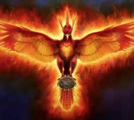 phoenix on pinterest