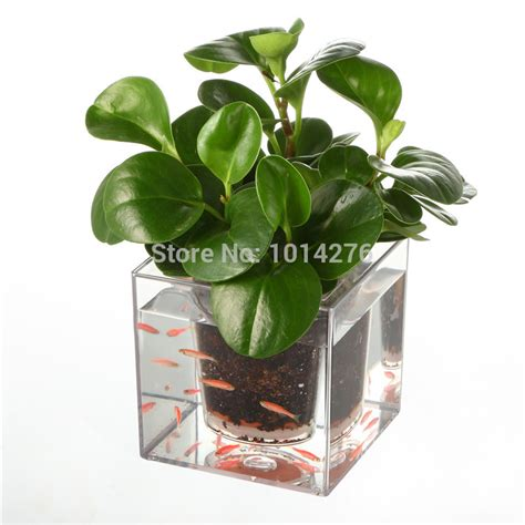 fish tank planter creative clear plant pot flower pot decorative self