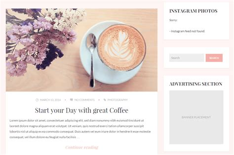 Blog Themes With Ad Space | wordpress themes supporting third party ads to monetize