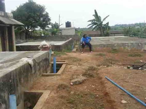 sle of a business plan on catfish farming fish farm for sale ikorodu with pictures business to