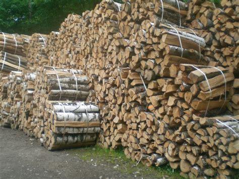 lagerung kaminholz brennholz lagern brennholz lagern tipps und tricks
