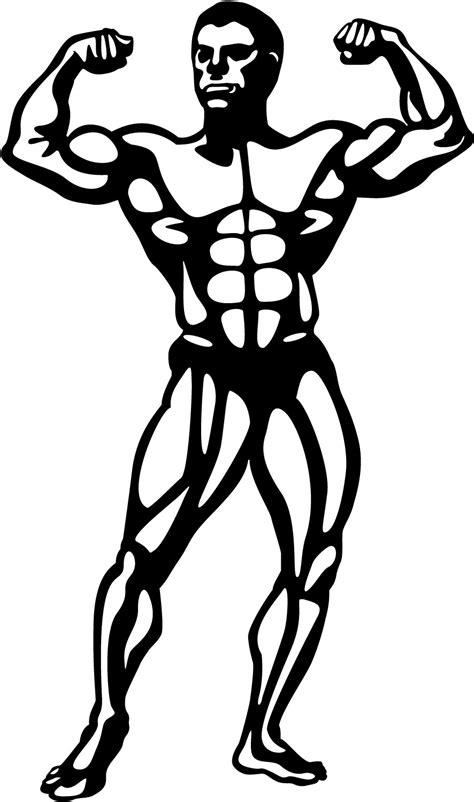 Outline Of A Bodybuilder by S 233 Lection De Dessins De Coloriage Musculation 224 Imprimer Sur Laguerche Page 1