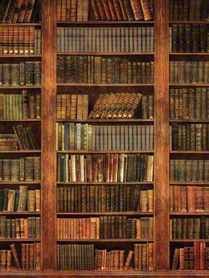 rustic bookcase backdrop great  senior portraits  headshots  law firms rustic