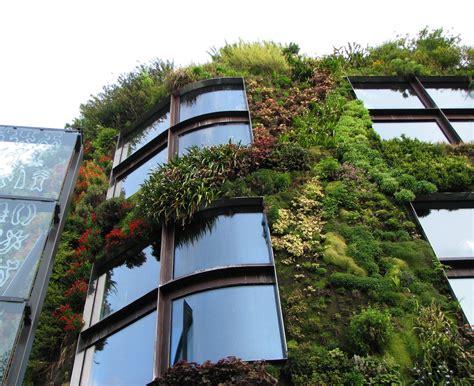 green garden walls green walls grow your garden on the vertical