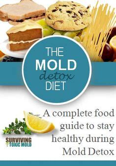 Mold Detox Symptoms by Cfs Fibro On Fibromyalgia Chronic Illness
