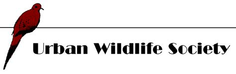 wildlife society western section pigeons insignificant as public health threat az dept