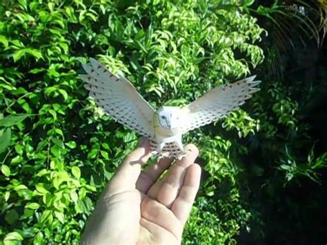Canon Papercraft Snowy Owl Free - 17 best images about papercraft on harry