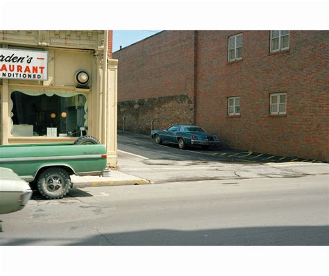 william eggleston the democratic 3958292569 porelpiano william eggleston quot the democratic forest quot