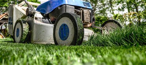 semina erba giardino non far crescere erba in giardino gallery of sistema di