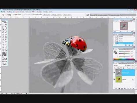 tutorial photoshop cs5 bianco e nero photoshop creare immagini in bianco e nero con