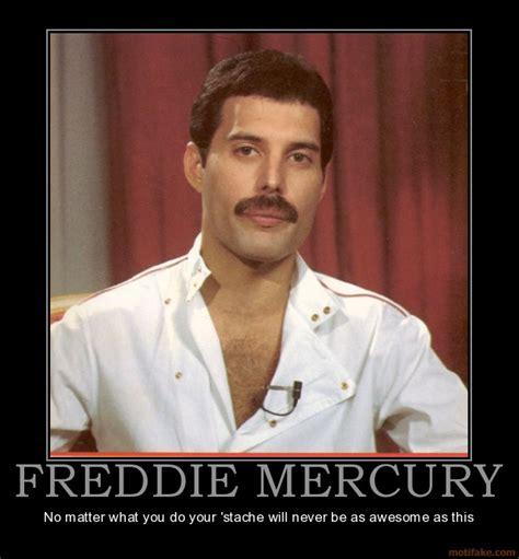 Freddie Mercury Memes - bytes freddie mercury the early years