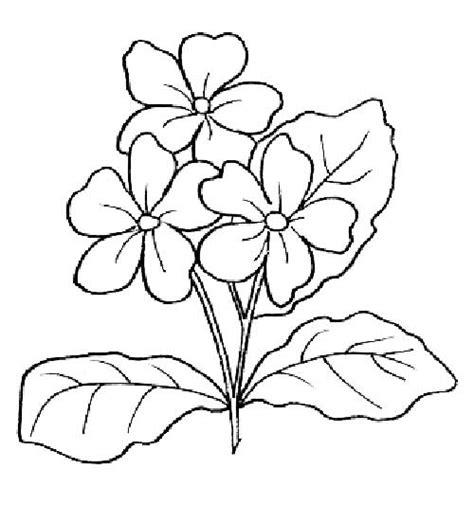 desenho flores 25 desenhos de flores para pintar colorir imprimir ou
