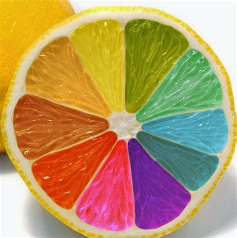 taste colors scientific method does the color of food affect the