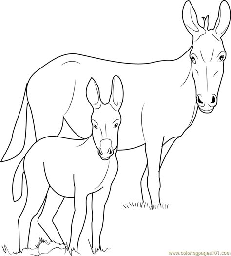 free coloring pages of donkey face