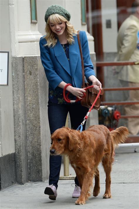 emma stone dog emma stone and andrew garfield walking his dog in nyc
