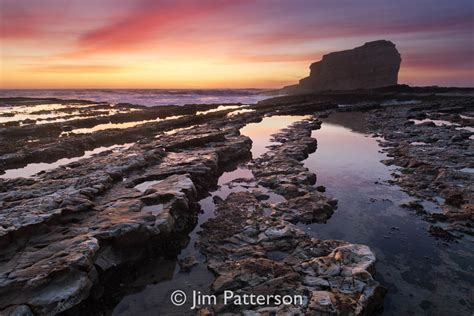 Santa Cruz Coastal Photos Gallery Coast To Coast Landscaping
