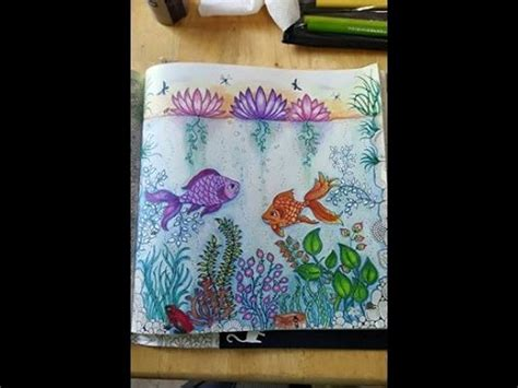secret garden colouring book fishpond the secret garden coloring book fish page part 3