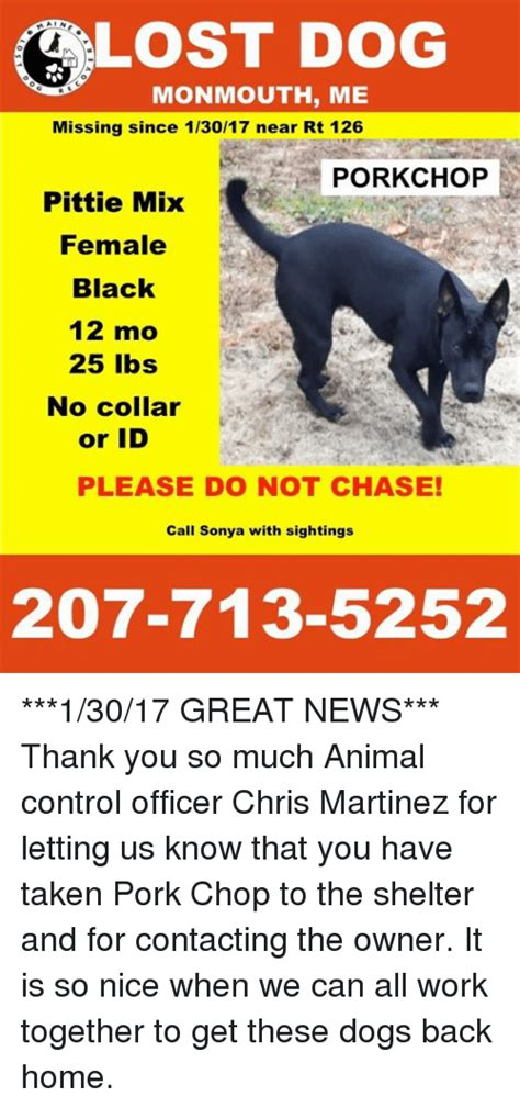 missing dogs near me pork chop memes of 2017 on sizzle dank