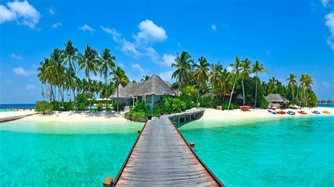 tropics houses coast bridges palma nature wallpaper