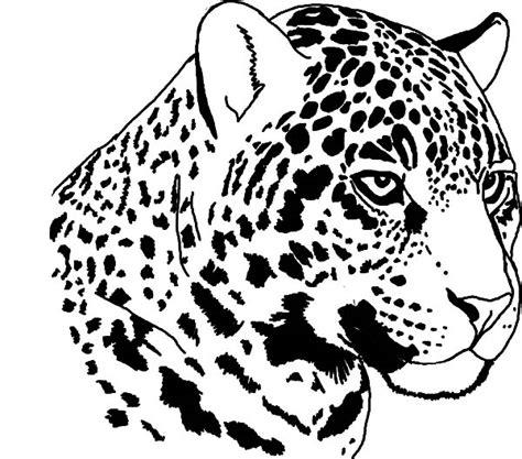 rainforest jaguar coloring pages jaguar coloring pages