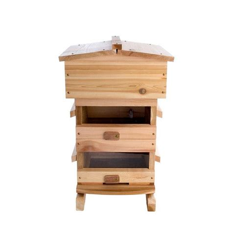 top bar hive kit top 25 ideas about bee hives on pinterest the roof bee
