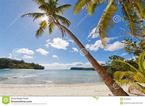 Dreams Palm Beach Resort by Tropical Paradise Polynesian Beach Ocean Sea Crystal Water