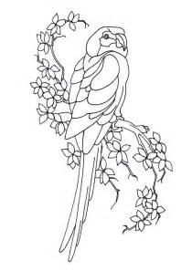 Glass Painting Outline Patterns by Coloriage Perroquet Branche Sur Hugolescargot Hugolescargot