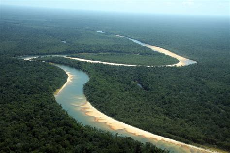 amazon basin opinions on amazon basin