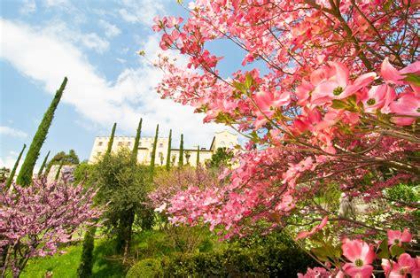 giardini in fiore foto parchi e giardini in fiore dove si trovano quelli pi 249