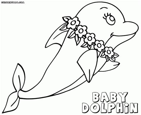 awesome dolphin coloring pages to color at coloring page