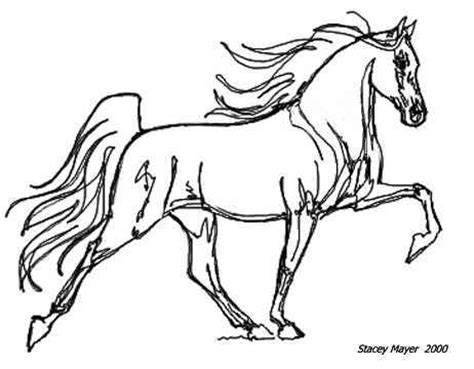 coloring pages of tennessee walking horses awhitehorse com stacey mayer s free online coloring pages