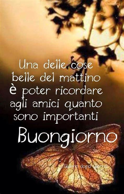 Bongiorno Meaning | pin buonanotte on pinterest images