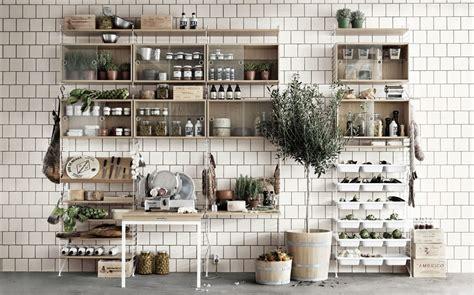 piante per cucina foto piante in cucina di francesco esposito 345719