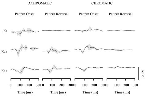pattern reversal stimulation frontiers cortical responses elicited by luminance and