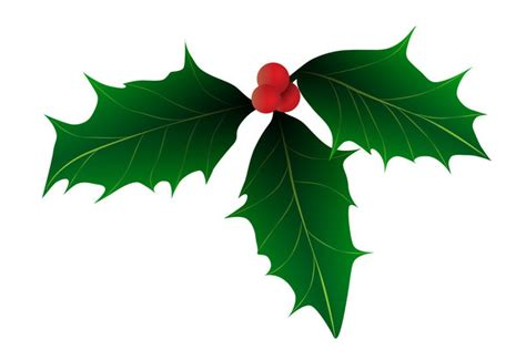 christmas leaf free stock photos rgbstock free stock images groningen november 16