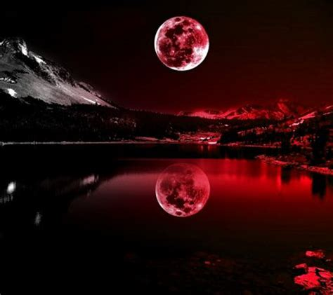 hd themes in zedge download red moonlight wallpapers to your cell phone