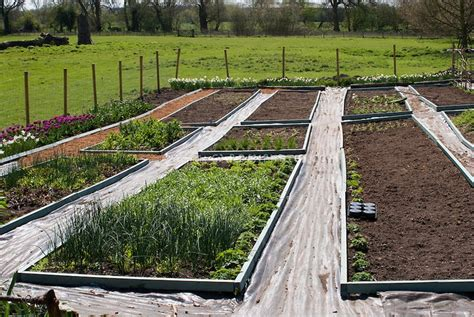 fabric raised garden beds 26 best images about raised beds on pinterest