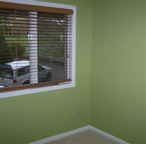 Mint Green Interior Paint by Your Denver Metro Construction