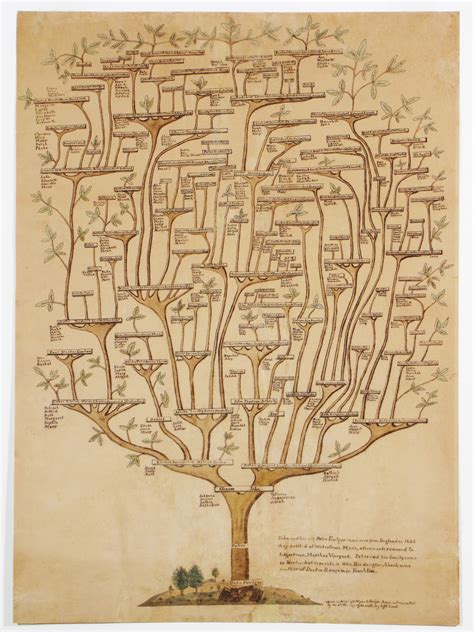 family tree of the nantucket folgers rare amp antique maps