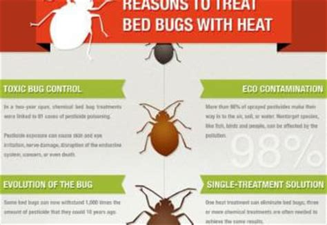 does heat kill bed bugs how to kill bed bugs with heat 28 images the hotter it