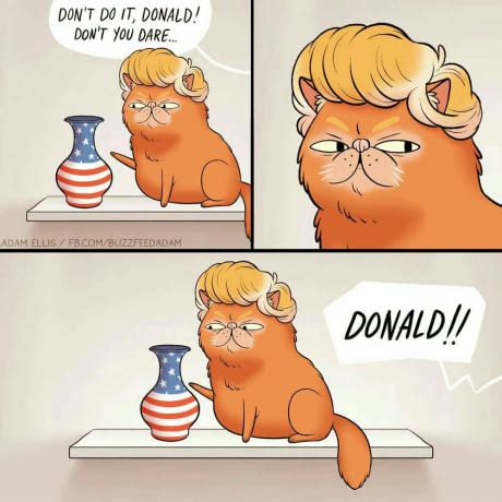 donald trump hello motherf the best 50 funniest donald trump memes ireportdaily