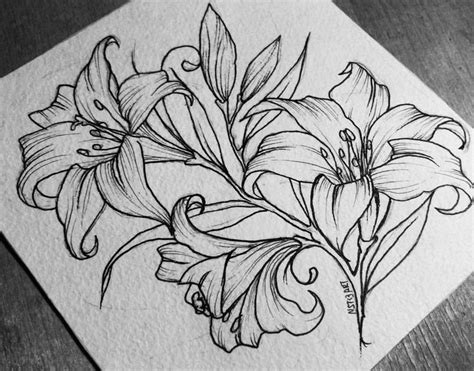 1486 best 199 izim images on pinterest drawings flowers