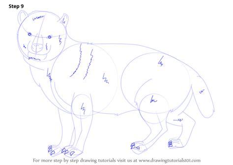 step by step how to draw a bush dog drawingtutorials101 com