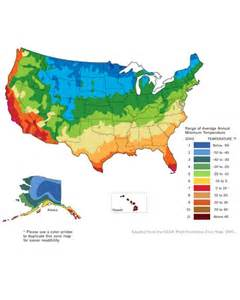 Us Zones For Gardening - planning your vegetable garden martha stewart