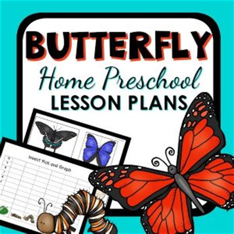 home education lesson planning resources libguides how to make an easy butterfly feeder
